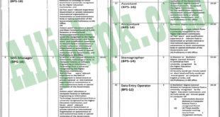 job pakista Archives - All Job Pk